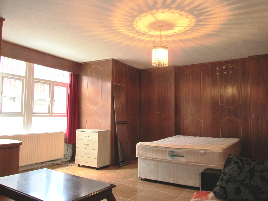 Spacious studio flat with separate kitchen and bathroom